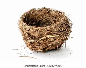 Empty nest isolated on white background - Image