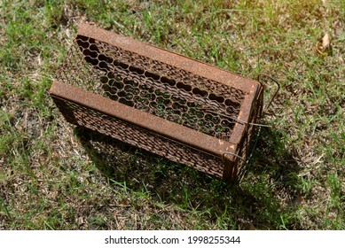 Empty  old steel cage for mousetrap placed on  green grass. The rat trap is stil - Shutterstock ID 1998255344
