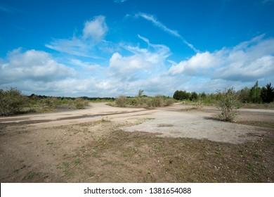 Empty overgrown wasteland sunny day