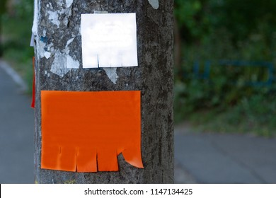 Empty paper ads on the post. Template of a paper advertisement on a lamp post. Street advertising. Homemade advertising. With space for text. Empty surface for advertising.