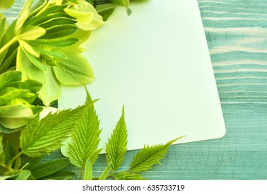 Empty paper list and bouquet of green flowers on wood background