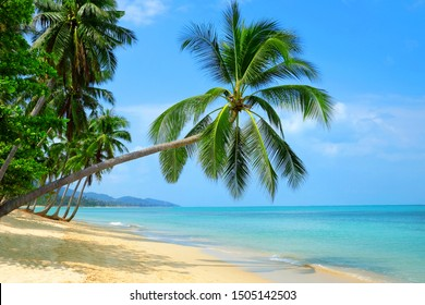 Empty paradise beach, blue sea waves in island. Beautiful tropical island. Holiday and vacation concept.