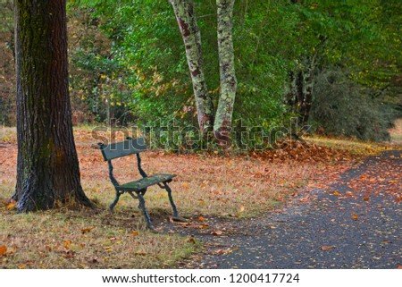 Empty park bench in a park in autumn