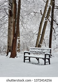 empty park bench covered in fresh snow in winter forest