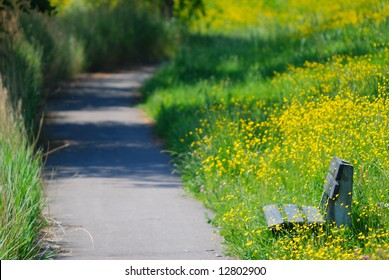 empty park bench with spring flowers