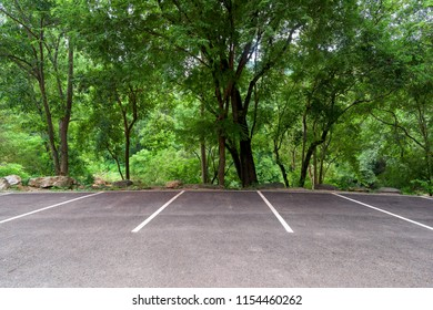 Empty parking lot with forest