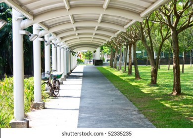 A empty path in the garden with fresh green grass and trees