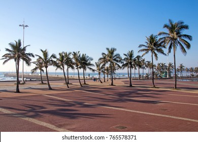 Empty Paved promenade recreational area against palm trees and coastal blue sky beach landscape in Durban, South Africa