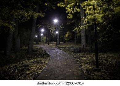 empty paved sidewalk with autumn leaves through dark park