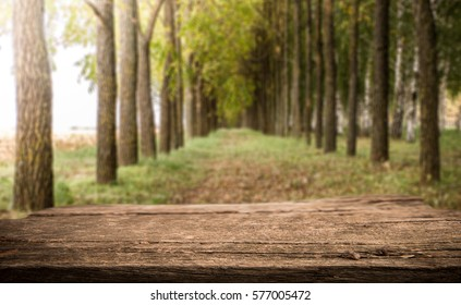 Empty perspective white wood over blurred trees with bokeh background, for product display montage