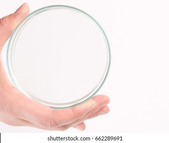 Empty petri dish ( Petrie dish. Petri plate or cell-culture dish) for growing cultures of microorganisms in doctor hand , fungi and microbes.