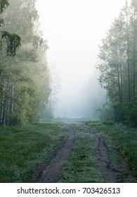 empty road in the countryside with forest in surrounding. perspective in summer with mist and green trees - vertical, mobile device ready image