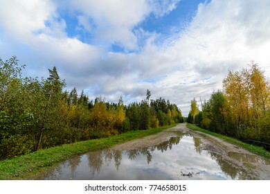 empty road in the countryside with trees in surrounding. perspective in summer. gravel surface in latvia with water puddles on the road
