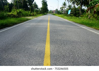 Empty road in the countryside.Yellow road dividers.