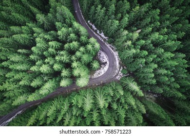 Empty road in a forest at early winter time. Aerial view from a drone looking down.