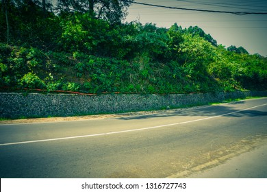 empty road with green bush and small tree on the side in puncak bogor indonesia