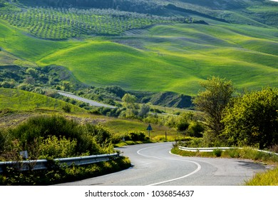 empty road and green hill in Tuscany, Italy