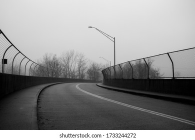 Empty Road on a Foggy Day