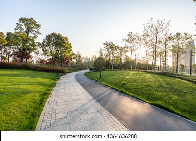 empty road in park
