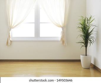 empty room with a houseplant
