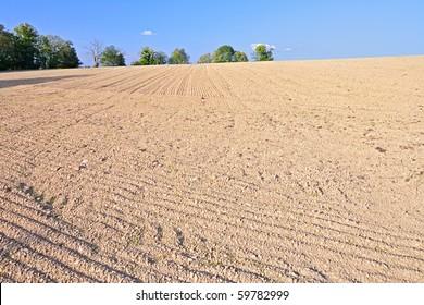 Empty rural field