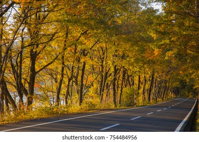 An empty rural road with trees with autumn leaves on both sides in sunset at Lake Tazawako, Akita, Japan