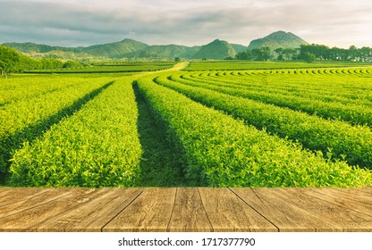 Leerer rustikaler Tisch vor der Teeplantage Landschaft bei Sonnenaufgang. Produktdarstellung und Konzept