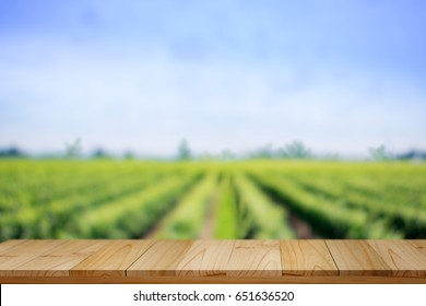 Empty rustic top wood table at gripening soybean field. For agricultural or product Display montage.
