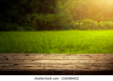 Empty rustic wooden picnic table surrounded by tropical vegetation - Reunion Island