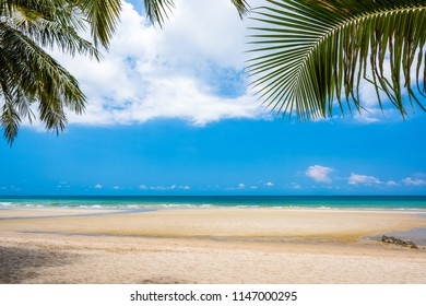 Empty sand beach with blue sea, coconut tree and blue sky background. Summer Vacation Travel and Holiday concept