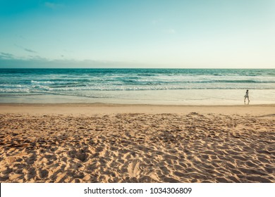 Empty Santa Monica beach in sunset retro toned