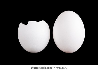an empty shell isolated on black background