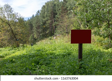 empty sign in the woods