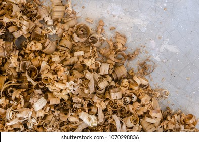 The empty space for copy text with wood sawdust or wood shavings in gray background. Close up view of wood sawdust texture material background. Abstract texture and background for designers.