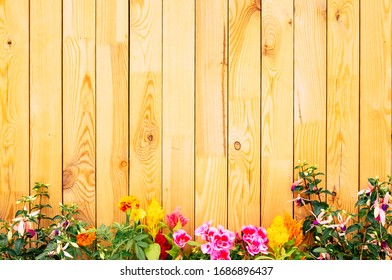 Empty space for message or advertising, brown wooden wall - recycled material - horizontal striped - old pattern background, flowering spring plant at the bottom