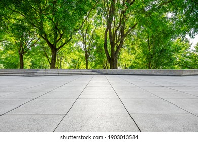 Empty square floor and green forest in city park.