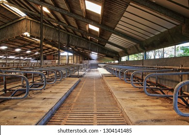 empty stall in cleared barn