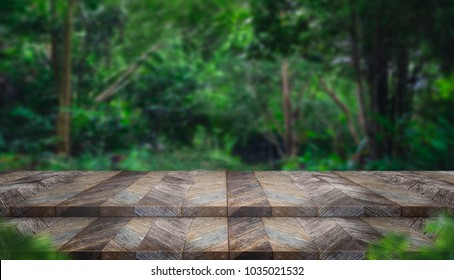 Empty step grunge wood table top with blur tree in tropical forest with bokeh light at background,Mock up template for display of your design,Banner for advertise of product,panorama view.