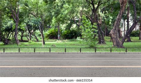 Empty street at the  garden.