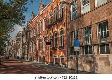 Empty street with semidetached brick houses, shade of trees at sunset and blue sky in s-Hertogenbosch. Gracious historical city with vibrant cultural life. Southern Netherlands.