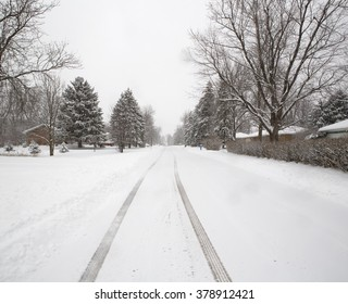 An empty suburban road weathers a mid-Winter Western New York snowstorm. Image shows a snow-covered road wending its way through a snow covered neighborhood as more snow falls from the sky.