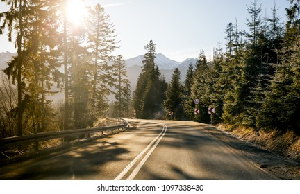 Empty sunny bright mountains highway or country road with a beautiful forest on both sides