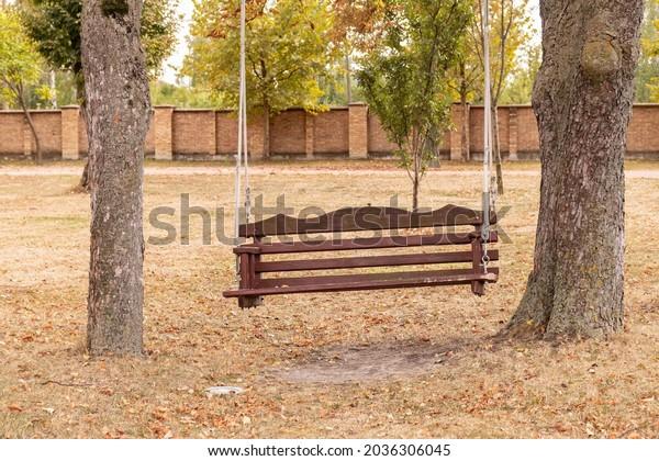 empty-swing-hanging-on-tall-600w-2036306
