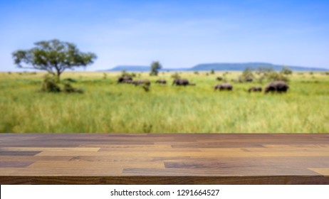 Empty table top for product display montage. Safari in Tanzania, elephants crosses the savannah blurred in the background.