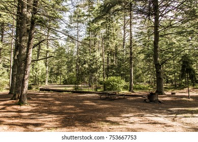 empty tent camper Campground Lake of two rivers Algonquin National Park a Beautiful natural forest landscape Canada