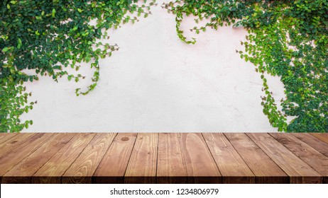 Empty top of wood table with green ivy leaves on cement wall background.