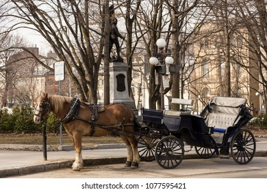 Empty traditional carriage and sturdy tan horse parked in St. Louis Street in Quebec City's old town, Quebec, Canada