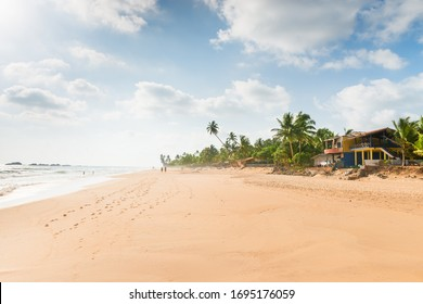 Empty tropical sunny beach with coconut palm trees, yellow sand and cloudy sky