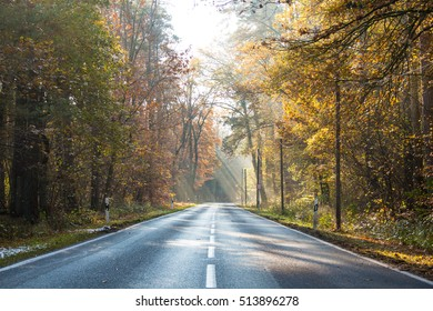 Empty wet country road with foliage trees on a late autumn day