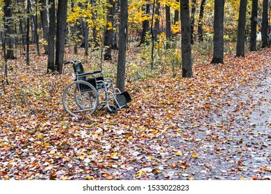 Empty wheelchair in the autumn forest, concept of hope and miracle, mobility and recovery of disabled people